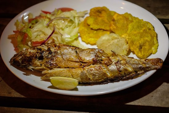 Isla Parida, Panama: Backed fish