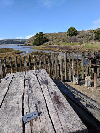 Getting to know Point Reyes