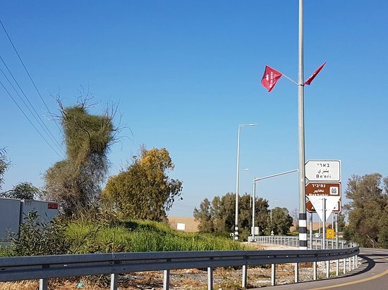 Sderot, Izrael: Natural red carpet in beeri