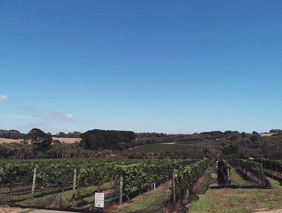 Aussie Escapades ภาพถ่าย