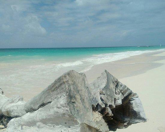 Maxwell Beach Foto
