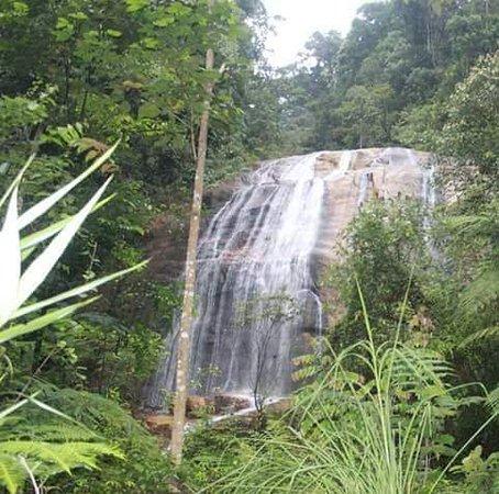 Kampung Jelebu, Malaysia: Lata dinding