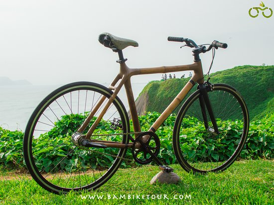 Bamboo Bike Tour