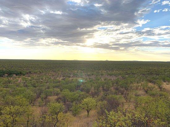 Damara Mopane Lodge: Damaraland