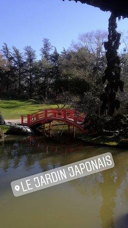 Jardin Japonais Toulouse 2019 Ce Qu Il Faut Savoir Pour Votre