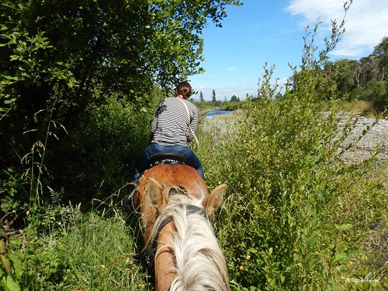 Korohe Horse Treks