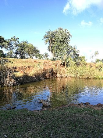 Фотография Nueva Colombia