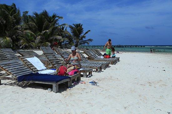 Costa Maya Adventures