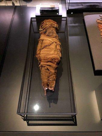múmia de criança
