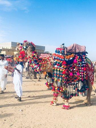 Jaisalmer Cars Rentals