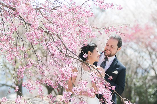 Nishi, Japón: Location photoshoot during the cherry blossom season