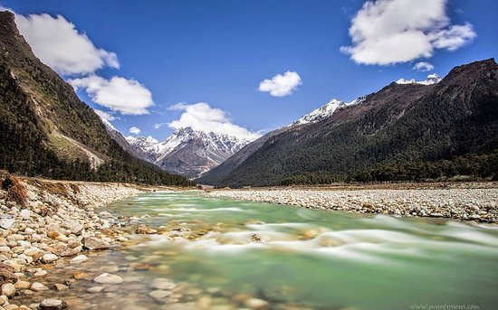 Yumthang Valley: YUMTHANG VALLEY WITH COLD WATER ND SOME ICY