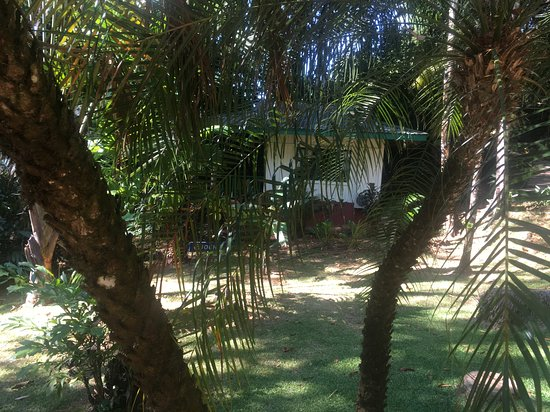 Playa Tortuga, Costa Rica: our room