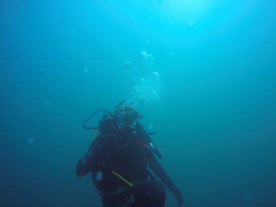 Quintay, Cile: primera inmersión curso open water