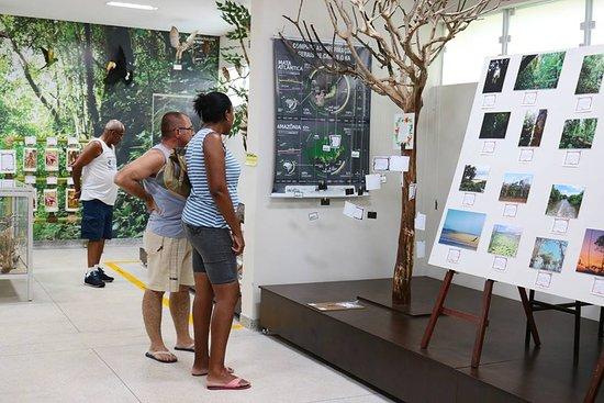Museu Municipal de História Natural Hortencio Pereira da Silva Junior
