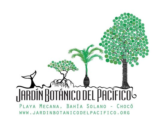 Bahía Solano, Colombia: Nuestro logo
