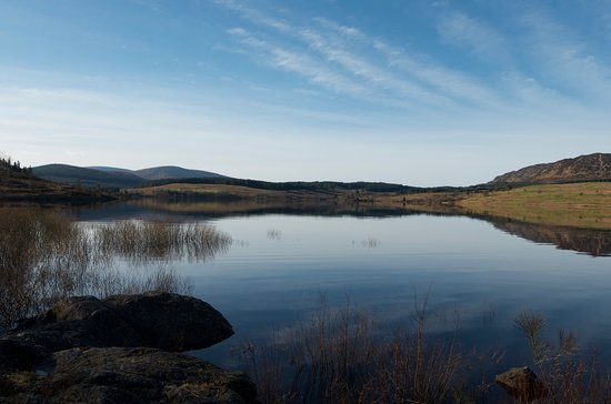Galloway Forest Park, UK: Clatteringshaws Loch