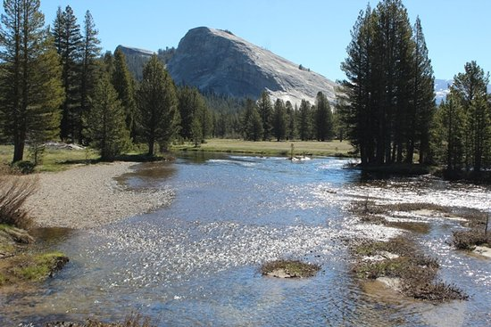 Tuolumne Meadows Bridge