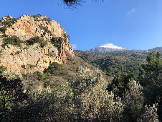 Goat Trails - Mountain Bikes & Hiking
