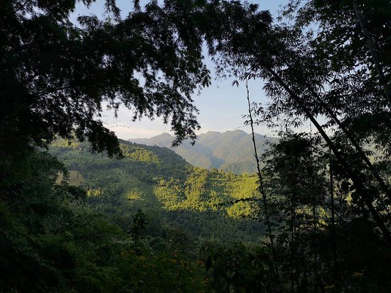 Hsipaw, Myanmar: Nature on the trek