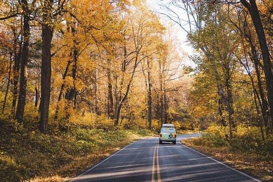 Escape Campervans (New York)