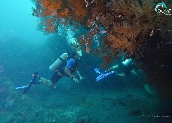 Atlantis International Bali: PADI Open Water Course in Tulamben