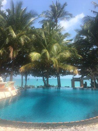 Paradise!