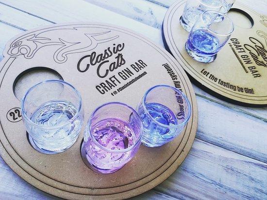 Craft Gin Tasting & Gin Bar