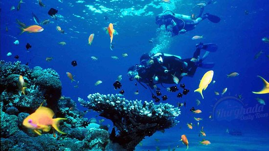 Hurghada Daily Tours