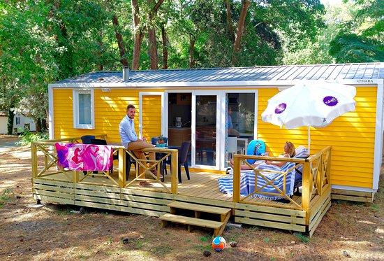 camping saint palais sur mer tente lodge