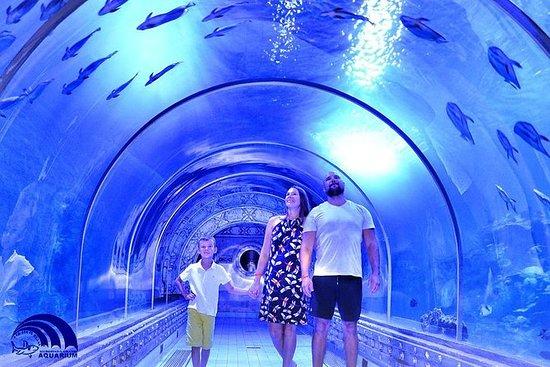 Hurghada Grand Aquarium...