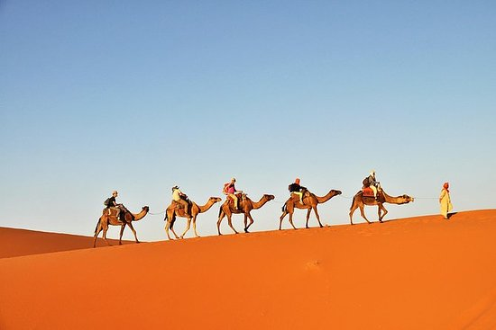 3-daagse Tunesische Sahara Desert ...
