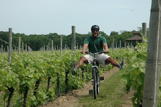 Mattituck Bike Wine Country y Fruit Orchard Tour
