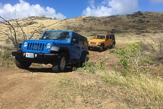 "4x4 Jeep ""Island Loop & Beach"" Safari..."