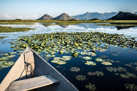 一日游:从波德戈里察出发的Skadar Lake游船之旅