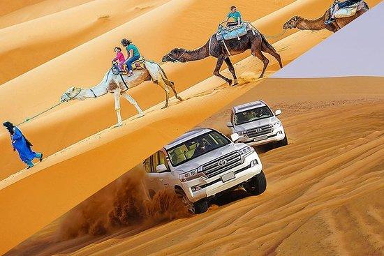 7天私人4x4和骆驼组合野生动物园在突尼斯撒哈拉大沙漠