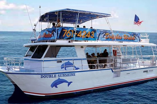 Morning Dolphin Watch & Eco Tour