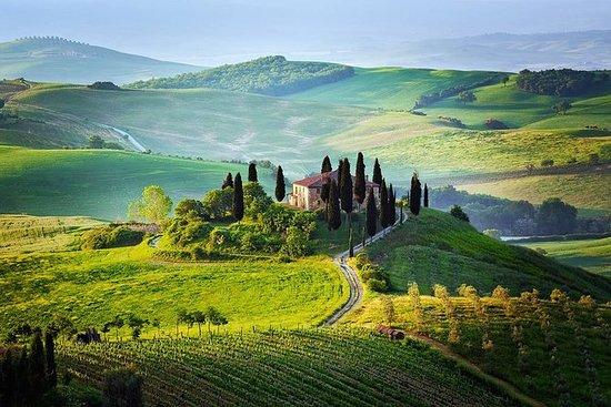 來自羅馬,蒙特普齊亞諾和皮恩扎的托斯卡納,品嚐葡萄酒和午餐