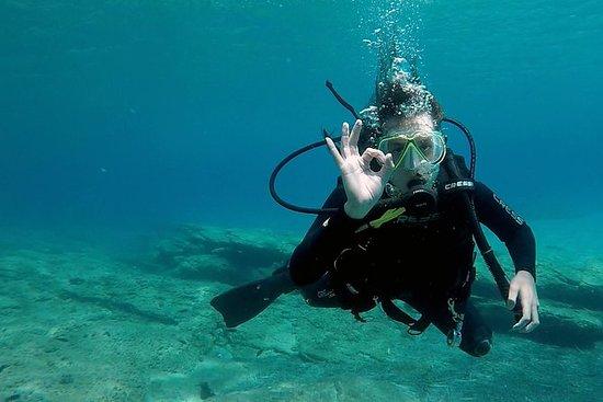 内在蓝色 - 基克拉泽斯的7天帆船和水肺潜水