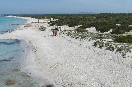 Mallorca Full Day Trip Strand Es Trenc