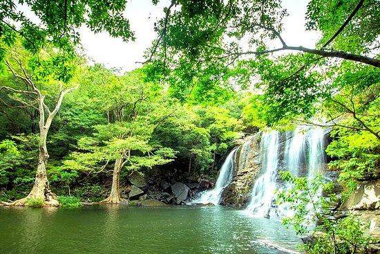 14 Days Guided Tour In Sri Lanka