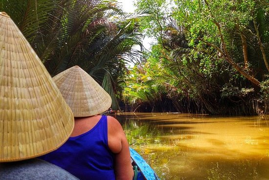 Mekong delta tour 1 day with Pioneer...