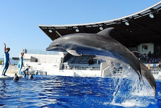 Kyoto Aquarium Admission ticket