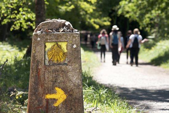 Buen Camino Argentina