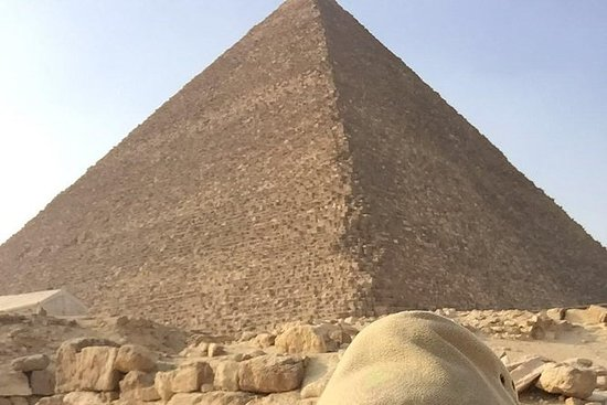 1-day trip to Cairo with flight from...