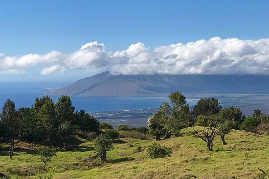 Private Upcountry Maui Tour