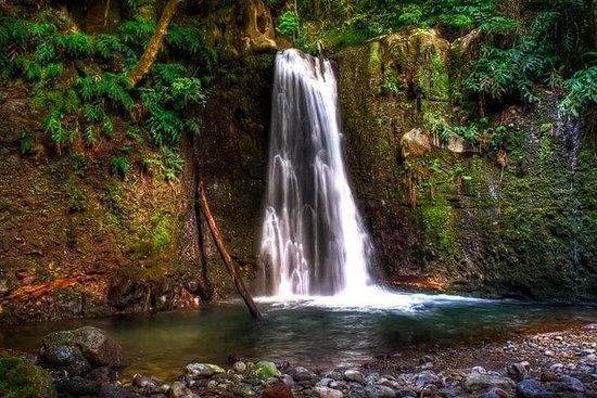 Full Day Hiking Faial Earth / Full...