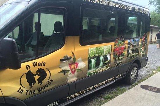 Smoky Mountain High Van tour
