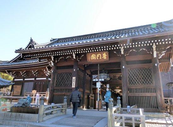Todoroki Gate