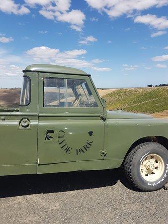 Bannockburn, Australie: There gorgeous Jeep